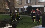 18 februari Brandweer blust brandje in holle boom Hazeveld Zevenhuizen