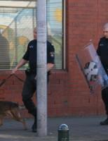 Politie houdt agressieve man aan Dr. Schaepmanstraat Den Haag