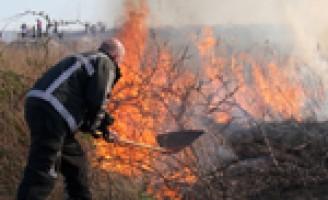 Groot stuk grasland verwoest door brand Maassluis
