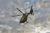 26 juni Traumahelikopter land voor Medische noodsituatie Amerikaweg Zoetermeer