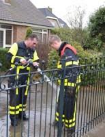 12 december Brandweer red paard uit de sloot Nieuwlandse Polderweg Hoek van Holland
