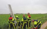 25 juli Brandweer haalt zwemmende koe uit water Sint Maartensrechtpad Delft