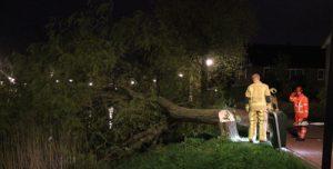 24 april Brandweer zaagt boom om na windvlaag Londensingel Den Haag
