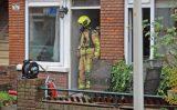 30 oktober Twee honden gered bij brand in woning Leersumstraat Den Haag [VIDEO]