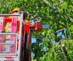11 juli Brandweer massaal ter plaatse bij stormschade P. van Vlietlaan Rijswijk