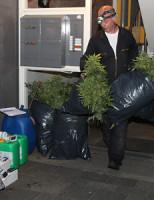 11 juni Politie ontdekt hennepkwekerij in woning Westplantsoen