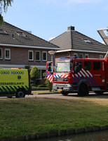 3 juli Brandweer haalt kat uit de boom Voordijkshoorn Den Hoorn