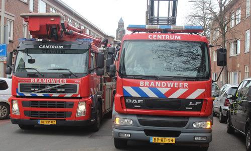 """<h2><a href=""""http://district8.net/1-maart-kat-zoekt-het-hoger-op-in-een-boom-schalk-burgerstraat-den-haag.html"""">1 maart Kat zoekt het hoger op in een boom Schalk Burgerstraat Den Haag<a href='http://district8.net/1-maart-kat-zoekt-het-hoger-op-in-een-boom-schalk-burgerstraat-den-haag.html#comments' class='comments-small'>(0)</a></a></h2>  Den Haag - Een kat hield de brandweer vanmiddag druk bezig op de Schalk Burgerstraat in Den Haag. Een kat was geschrokken en was een boom in gerend, na een"""