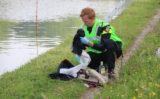 28 mei Brandweer zoekt in water naar vermiste man Delftweg Rijswijk