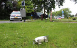 28 juni Auto vliegt uit de bocht Dijkweg Honselersdijk [VIDEO]