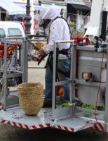 5 juli Brandweer assisteert imker op de Markt Delft (video update)