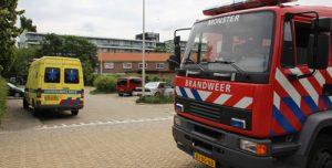 30 juni Brandweer redt vastzittende spreeuw van dak Julianastraat Poeldijk