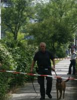 6 augustus Bedreiging met vuurwapen Delft