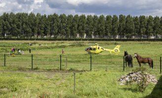 13 augustus Meisje gewond na trap van paard Polderweg Schiedam