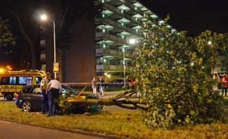 20 mei Bestuurder vliegt uit de bocht tegen boom Zoetermeer