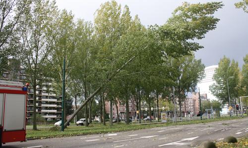 Prinses Beatrixlaan Rijswijk (3)