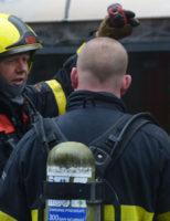 8 maart Zeer grote brand in het Kurhaus Gevers Deynootplein Den Haag