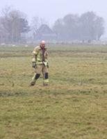 5 februari Schaap op het droge gezet Vroonweerseweg Vlaardingen