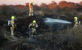 25 februari Brandweer rukt massaal uit voor brand in duinen Hoek van Holland