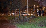 25 november Porsche rijdt boom omver bij ongeval Abraham van Stolkweg Rotterdam