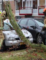 18 maart Schade aan auto door omgevallen boom Van Viandenstraat Vlaardingen