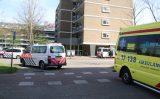 17 april Twee aanhoudingen na mishandeling Van Beethovenlaan Schiedam
