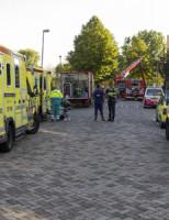 11 september Konijn overleden bij Grote brand Toscalaan Rotterdam